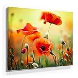 Mohnblumen Bild A350, 1 Teil 50x50cm Leinwand auf Holzrahmen aufgespannt, FineArt Print, UV-stabil und wasserfest, Kunstdruck für Büro oder Wohnzimmer, Deko Bild