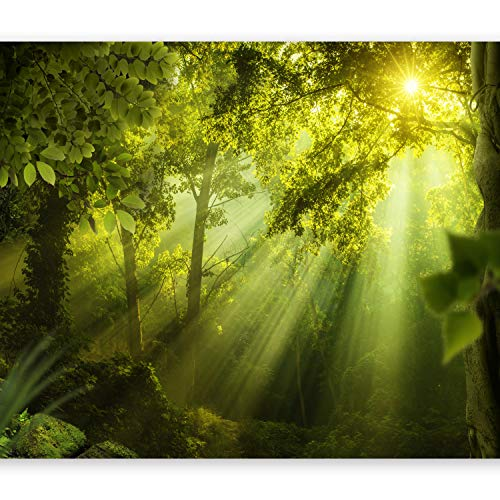 murando - Fototapete Wald 400x280 cm - Vlies Tapete - Moderne Wanddeko - Design Tapete - Wandtapete - Wand Dekoration - Natur Landschaft grün c-A-0077-a-a -