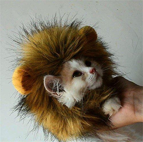 Bello Luna Löwe Haar Kopfbedeckung für kleinen Hund und Katzen, Löwe Mähne Perücke Welpen Cosplay Kostüm für Halloween Weihnachten Ostern Festival Party (Löwe Machen Kostüm Für Hunde)