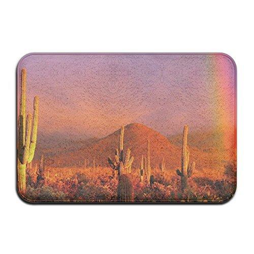 Desert Cactus Coucher de Soleil Avant Paillasson 4060 cm