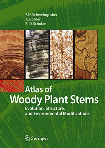 Atlas of Woody Plant Stems: Evolution, Structure, and Environmental Modifications (English Edition)