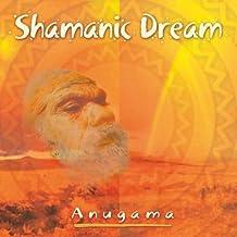 Shamanic Dream [Import anglais]