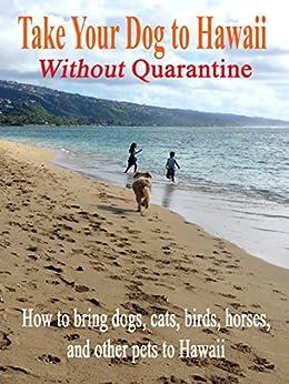 taking pets to hawaii