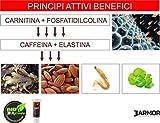 J.ARMOR Creme für Männer Frauen 200ml | Fettverbrennung Thermogene Fettverbrenner | Gewichtsverlusthilfe Fatburner Accelerator Abnehmen | Carnitin und Phosphatidylcomin 100% Bio MADE IN ITALY Vergleich