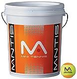 Mantis Stufe 2 Orange Tennisbälle Eimer 72 Stück