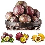 Keptei Samenhaus- 20 Korn Maracuja Passionsfrucht Samen (Passiflora edulis) Obstpflanze Granadilla Seed mehrjaehrig schmeckt gut (Lila)