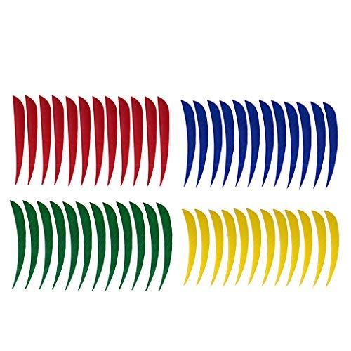 FLAMEER 48 Stück 5 Zoll Bogen Pfeilfeder - Bogenschießen Zubehör