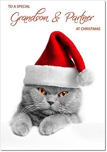 nipote & partner Christmas di gatto con cappello di Babbo Natale–dimensione media