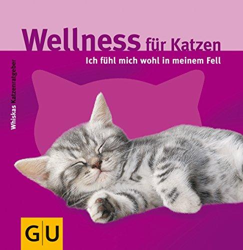 Wellness für Katzen