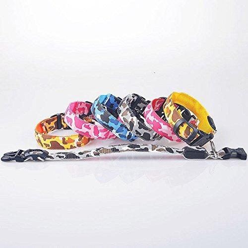 LED Hunde Leuchthalsband in 7 Farben Hund Halsband Katze leuchtet Licht Blinki 5 Größen XS S M L XL (L, Grün) - 4