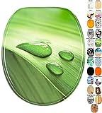Abattant WC - Beaucoup de beaux abattants WC - Finition de haute qualité - Charnières robustes - Fixation facile (Feuille verte)
