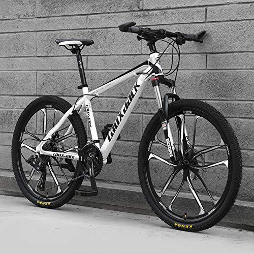 AP.DISHU 10 Speichenräder Mountainbikes Hydraulische Doppelscheibenbremse Mountainbike Männliche und weibliche Studenten Rennrad 24-Zoll-Rad MTB,Black & White,24 Speed
