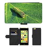 Just carcasa caliente estilo ranura de tarjeta de teléfono celular Funda de piel sintética//m00138235Caterpillar Lepidoptera Hoja Verde//Apple iPhone 5C
