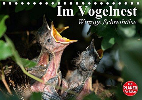 Im Vogelnest. Winzige Schreihälse (Tischkalender 2017 DIN A5 quer): Hungrige Schnäbel in kunstvollen Nestern (Geburtstagskalender, 14 Seiten)