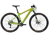 Bergamont Revox LTD 29'' Carbon MTB Fahrrad Sondermodell grün/orange 2016: Größe: M (168-175cm)