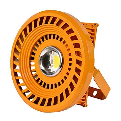 MagiDeal LED explosionsgeschützte Lampe Industriebeleuchtung für Tankstelle Kohlebergwerk, 20W / 30W / 50W - Kaltes Weiß, 30w -
