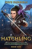 Hatchling: (Wyvernette Book One)