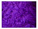FABRICS-CITY VIOLETT TEDDY LANGHAAR FELL STOFF FELLIMITAT