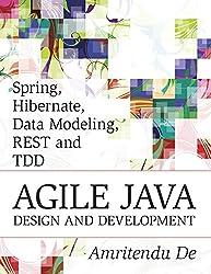 Spring, Hibernate, Data Modeling, REST and TDD:Agile Java Design and Development (English Edition)
