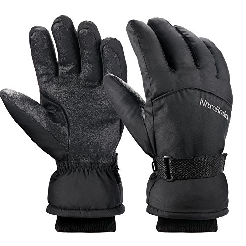 Skihandschuhe Herren Winter, NitroBotics, Wasserdicht Winterhandschuhe Ski Snowboard motorrad Fahrrad Skifahren Handschuhe Winddicht Thermisch Thinsulate (Large)