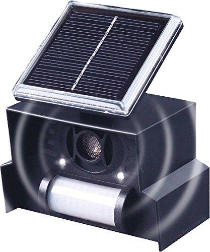 Solar-Vogelabwehr 1 x 3,2 V, 500 mAh-Akku 23 - 50 kHz