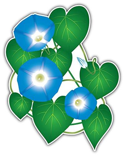 SkyBug Ipomoea Morning Glory Flower Bumper Sticker Vinyl Art Decal for Car Truck Van Window Bike Laptop -