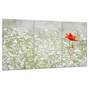 QUADRO SU TELA CANVAS - INTELAIATO - PRONTO DA APPENDERE - PAPAVERO ROSSO - Fiori Flowers - Natura - 100x50cm (cod.217)