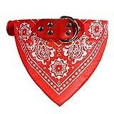 Ellaao Pet Supplies Recovery Halsbänder für Hundehalsband, Namensschild, für Kleine und mittelgroße Hunde