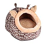 Cat Houses Review and Comparison