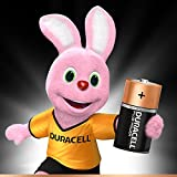 Duracell Plus Power Type C Alkaline Batteries, pack of 6