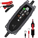 AUTOXEL Car Battery Charger and Maintainer 3.8A 6V 12V Intelligent Household Automotive Charger