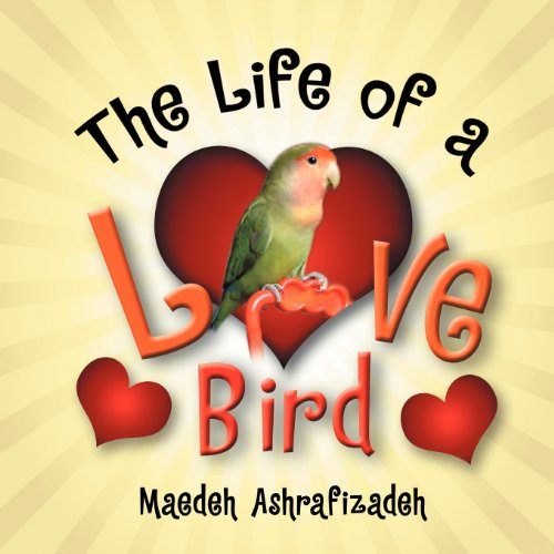 The Life of a Lovebird