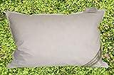 Betten Hofmann JAPAN Kissen Kopfkissen Federkissen 43x63 cm 30% Daunen strapazierfähig weich (600g medium)