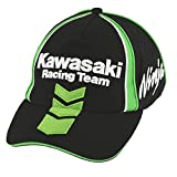Kawasaki Racing Team Ninja -