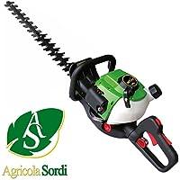 ACTIVE TAGLIASIEPI H24 LAMA 600mm MOTORE 2 TEMPI MISCELA - Utensili elettrici da giardino - Confronta prezzi
