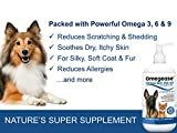 100% Pure Omega 3, 6 & 9 Fish Oil for Dogs and Cats - Best For Skin, Coat, Joint, Heart & Brain Health. Boosts Immunity. From Wild Caught Fish - Better Source of DHA & EPA Than Farmed Scottish Salmon Oil. Results in 30 Days or Your Money Back