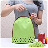Fashion Thermal Lunch Box Bag (Colour May Vary)