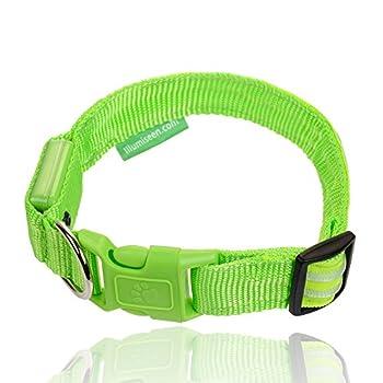Illumiseen Led-hundehalsband In 6 Größen 6 Farben - Größe Xs Grün 1