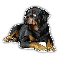 Rottweiler Dog Car Decor Vinyl Sticker 12 X 10 cm