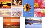 50 Geburtstagskarten Sprüche Natur Landschaft Sonnenuntergang Grußkarten Glückwunschkarten Geburtstag Klappkarten mit 50 Umschlägen 51-6240