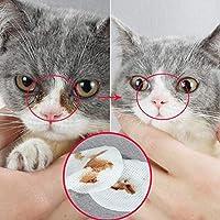BeesClover - 100 toallitas húmedas para Mascotas con Ojo de Mascota, pañuelo húmedo para Perros y Gatos
