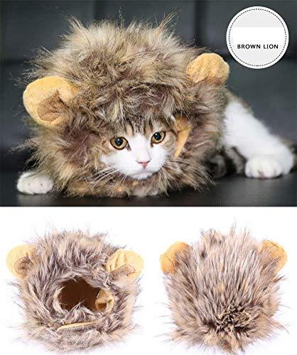 Katze Kostüm Lion - DAN Lion Mähne Kostüm Für Katze & Hund, Pet Kostüm Cosplay - Pet Perücke Kleidung Für Halloween Party