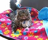 Personalisierte Hunde- oder Katzen-Decke, mit Namen bestickt