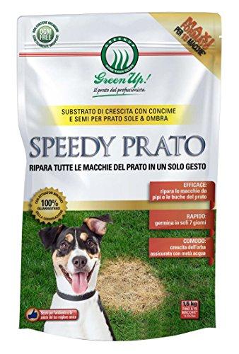 semi di prato + concime per prato erba riparatore delle zone degradate del prato chiazze macchie nel prato 1,5 kg amdgarden