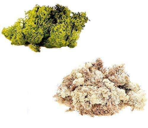 Preisvergleich Produktbild Inerra Finnland Moos - Packung zu 2 Gemischte Farben 50g Beutel - Rentier Moos Basteln Pflanzen Töpfe Blumen Display Modellier - 50g olivegrün & 50g natürlich