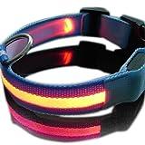 flyyfree Neue orange Nylon LED Hund Nacht Sicherheit Halsband Blinklicht bis W/Circular Anhänger Halsband Größe: 45–52cm Breite: 2,5cm
