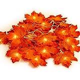Ahornblatt Lichterketten,HENMI Maple Leaf Lichterketten, Lichterkette Ahornblätter, Herbst Saison 20-LED Lichterkette, Urlaub Beleuchtung...