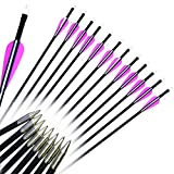 "12Pcs 28"" Fiberglass Archery Target Arrows - Practice Arrows or Youth Arrows"