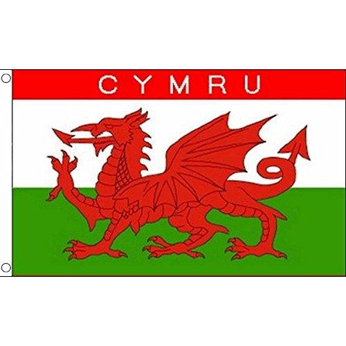 AZ FLAG Flagge Wales Cymru 90x60cm - WALISISCHE Fahne 60 x 90 cm - flaggen Top Qualität