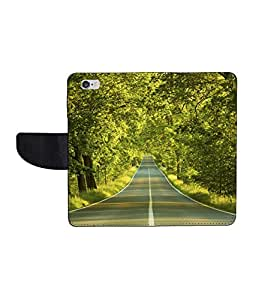 KolorEdge Printed Flip Cover For Apple IPhone 5 - Multicolor